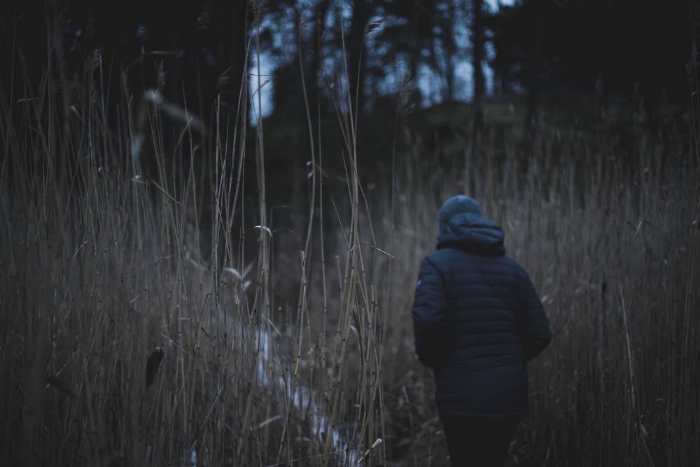 Im Wald auf Seurasaari